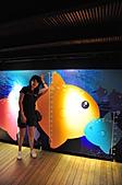 花蓮二日遊:可愛的曼波魚