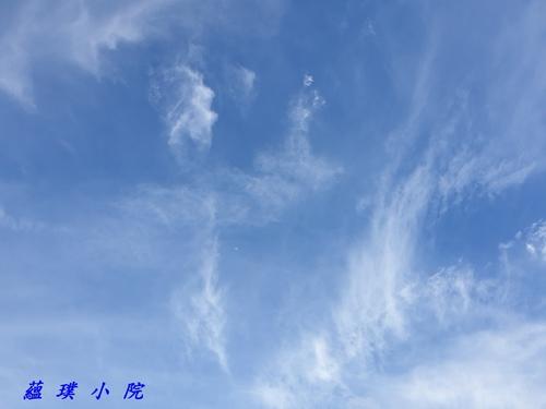 20200629_165559.jpg - 風景