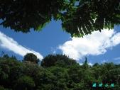 風景:IMG_4794.jpg