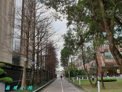 20210216_143139.jpg - 風景