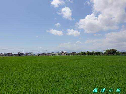 20210421_105102.jpg - 風景
