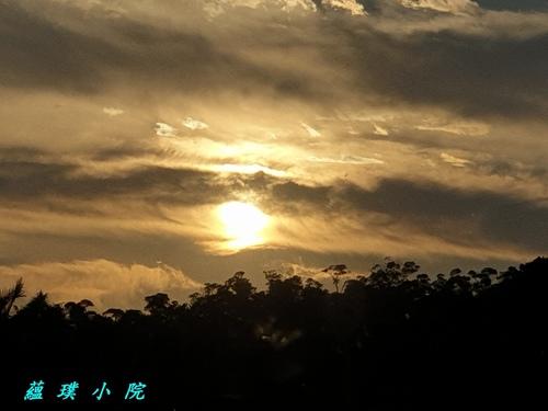 20200906_173751.jpg - 風景