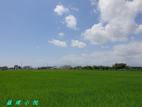 20210421_105103.jpg - 風景