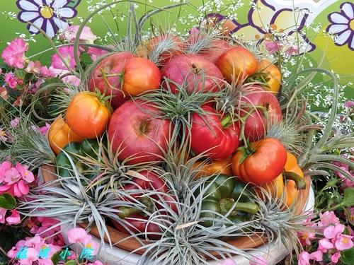 20200306_165214.jpg - 水果蔬菜