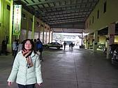 20080211_關西仙草_新埔蕃茄:1481.jpg