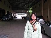 20080211_關西仙草_新埔蕃茄:1489.jpg