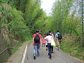 1030525 嘉義瑞里綠色隧道:DSCN9824.JPG