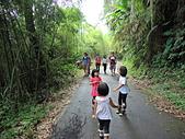 1030525 嘉義瑞里綠色隧道:DSCN9828.JPG