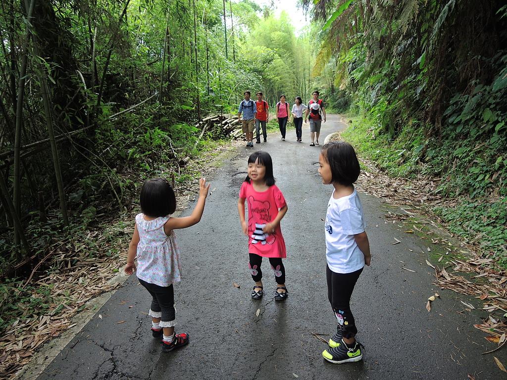 1030525 嘉義瑞里綠色隧道:DSCN9827.JPG