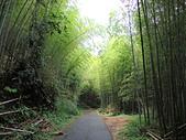 1030525 嘉義瑞里綠色隧道:DSCN9840.JPG