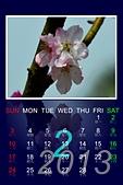 分享我製作的2013年,月曆.:2 月份.jpg