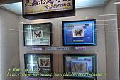 成功高中「蝴蝶宮.昆蟲科學博物館」:20100128蝴蝶宮昆蟲館(林柏昌攝)033.JPG
