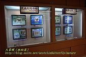 成功高中「蝴蝶宮.昆蟲科學博物館」:20100128蝴蝶宮昆蟲館(林柏昌攝)043.JPG