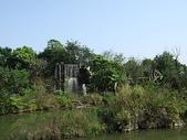 100.3.13準園生態農場:DSCF2552.JPG
