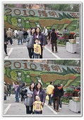 陽明山花季:p4.jpg