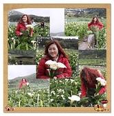 99.3.28採海芋:page12.jpg