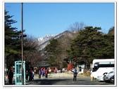 國外旅遊:DSCF0695_nEO_IMG.jpg