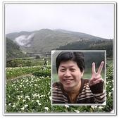 99.3.28採海芋:page1.jpg