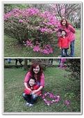 陽明山花季:p9.jpg