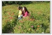 大屯花卉農場:DSCF2565.JPG
