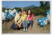 大屯花卉農場:DSCF2557.JPG
