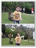 陽明山花季:p8.jpg