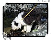 2003~出遊:2003-12-07-021.jpg