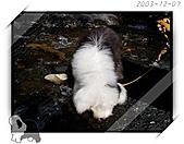 2003~出遊:2003-12-07-024.jpg