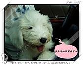 2003~出遊:2003-10-05-006.jpg
