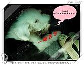 2003~出遊:2003-10-05-010.jpg