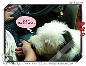 2003~出遊:2003-10-05-012.jpg