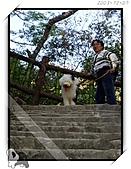 2003~出遊:2003-12-07-029.jpg