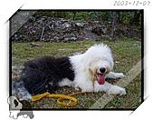 2003~出遊:2003-12-07-034.jpg