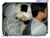 2003~出遊:2003-11-08-007.jpg