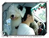 2003~出遊:PB090037.jpg