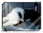 2003~出遊:PB090050.jpg