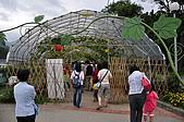 2009 宜蘭綠色博覽會:DSC_0513.JPG