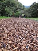 2010 礁溪:林美石磐步道