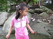 三峽水車寮溪:IMG_2181.JPG