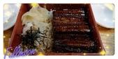 台南~鰻丼作料理:鰻魚丼