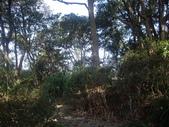 新北林口新林步道:IMGP7502.JPG