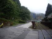 嘉義阿里山對高岳:IMGP0656.JPG