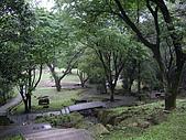 桃園大溪新溪洲山、溪洲山:IMGP1396.JPG