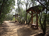 台中大肚環保公園登山步道:IMGP6228.JPG