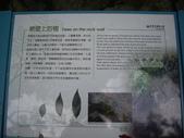 花蓮秀林長春祠步道:IMGP8982.JPG