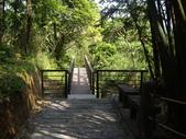 新竹橫山福沙大崎步道:IMGP9439.JPG