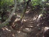 新北林口頂福巖森林步道:IMGP0967.JPG