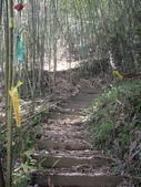 苗栗泰安象鼻古道、千兩山步道、千兩山:IMGP9860.JPG