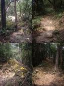 台北內湖金面山、剪刀石山、西湖山、小金面山:IMGP7621-24.JPG