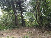 新竹芎林西坑山、南何山、南何山南峰、沙坑山、二確山:IMGP6454.JPG
